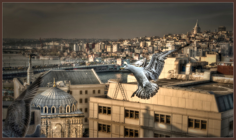 The Golden Horn, Istanbul, Turkey - HDR.