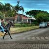 Crossing main street, Hanga Roa, Easter Island (Rapa Nui) - HDR.