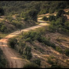 A walk through Queen Elizabeth National Park, Uganda - HDR.