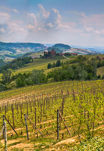 The view from the top of the lower part of the Cerequio (Cru) Vineyard in Barolo. 3 exposure handheld. I will be returning with a tripod, but I'm waiting for a better day when the marine layer is not so bad (i.e. clear, clear skies). Still, it is like Narnia to me.