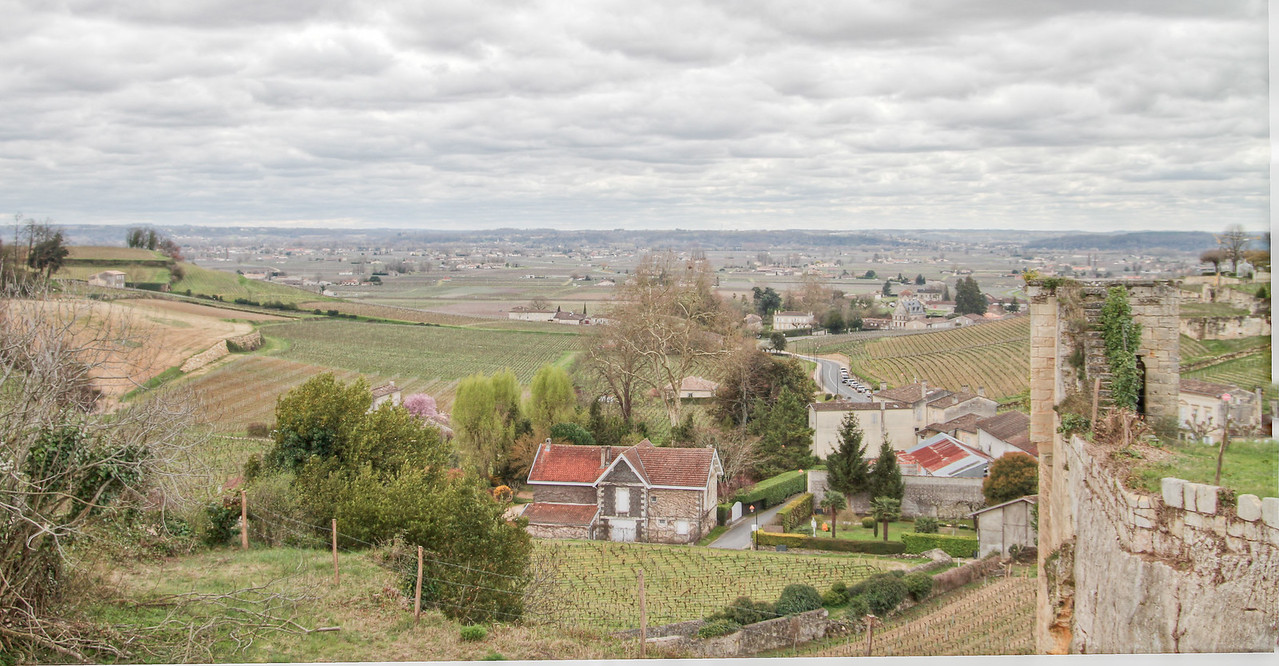 a view from Saint-Émilion, looking over the grand cru vineyards to the east