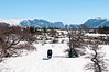 Running free, Western Brook Pond Trail, April 20