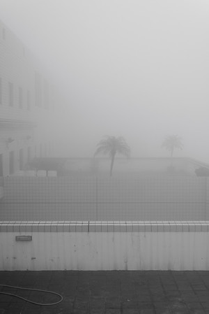 Mist covering the roof of academic building, Mar 2014. It is common that having mist on campus. The visibility can be very low.