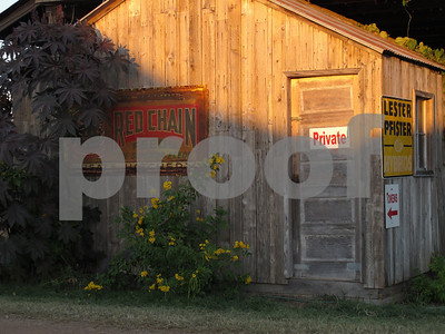 Dewberry Farms 100910