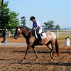 holly hill farm<br /> 8th annual horse show <br /> 9-5-10<br /> photo by claude price