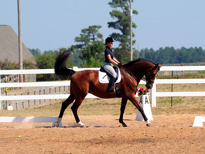 """HOLLY HILL FARMS 8TH ANNUAL HORSE SHOW SEPTEMBER 5,2010 """"DRESSAGE"""""""