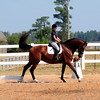 "HOLLY HILL FARMS 8TH ANNUAL HORSE SHOW SEPTEMBER 5,2010 ""DRESSAGE"" : FOR ENHANCED VIEWING CLICK ON THE STYLE ICON AND USE JOURNAL. THANKS FOR BROWSING."