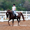 TRI STATE DRESSAGE SOCIETY PRESENTATION : FOR ENHANCED VIEWING CLICK ON THE STYLE ICON AND USE JOURNAL. THANKS FOR BROWSING.