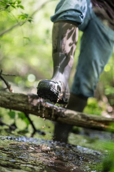 Wetland, Field Blazer and Woody Sport