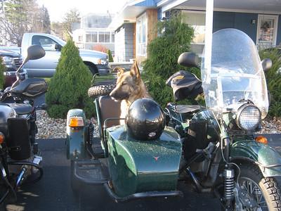 'Hack Friday' turned 'Sally Sunday' Ural Ride November 29, 2009