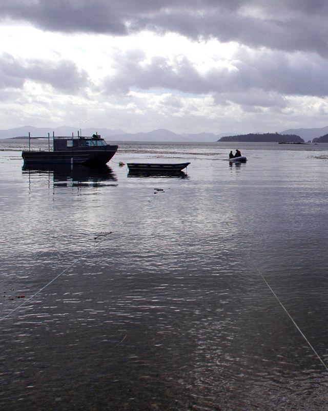 Skedans 7 - Boats docked at Skedans - the ancient abandoned Haida village.