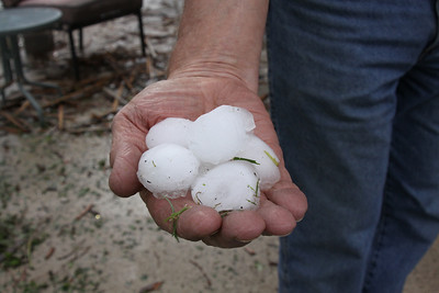 This is some of the hail, keep in mind this is about 3 hours AFTER the storm and this was from the yard not the freezer!