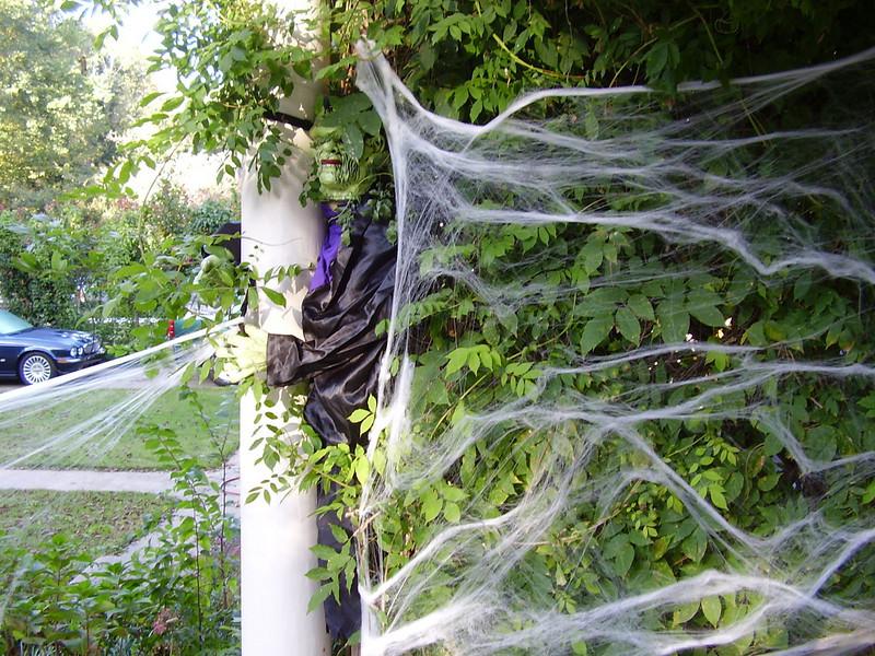 Frankenstein holds up the cobwebs.