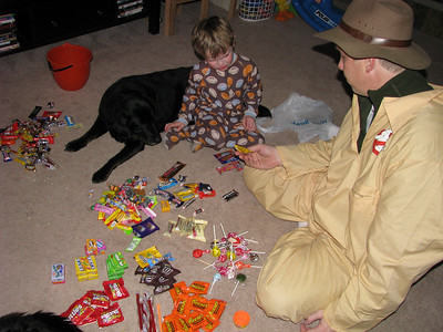 Sorting candy...Alex is definitely Jason's child, we had to categorize the candy.  Notice the dog trying to help