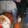 There were 16 pumpkins to be carved.. Amanda, thankfully, helped out