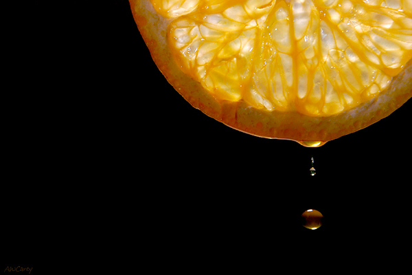 Orange Drop  Juice dropping from an orange slice.