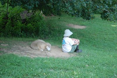 Jacob the sheep who thinks he's a dog.  and Arna