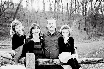 I love this. I would blow it up big and say... This is US..This is our family... really good of Rachel and Devin too and the kids always look cute.