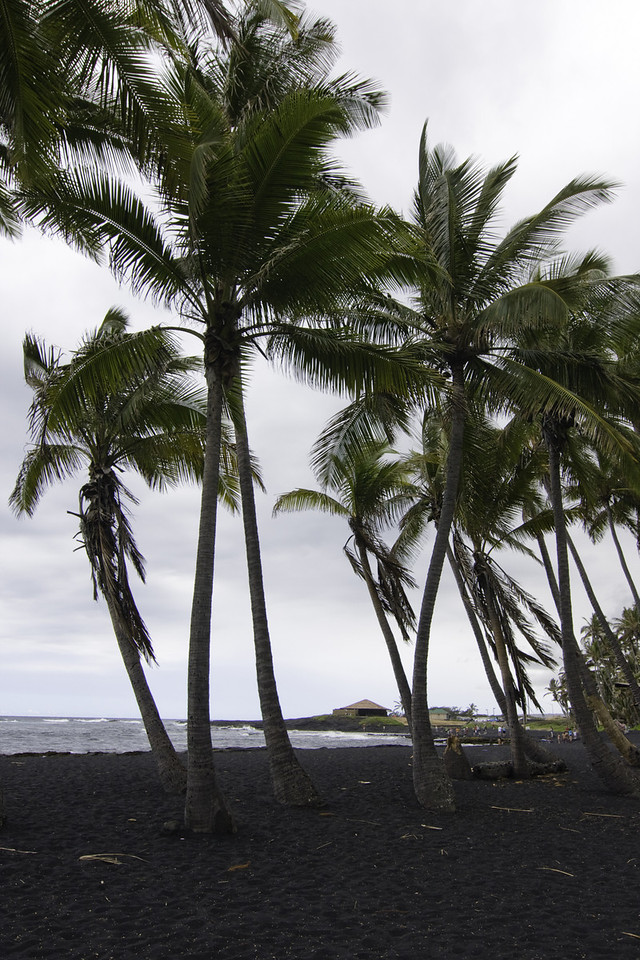 Black sand beach at Punaluu.