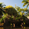Riding on a canoe through 7 Polynesean villages as you'll on the next couple of photos.
