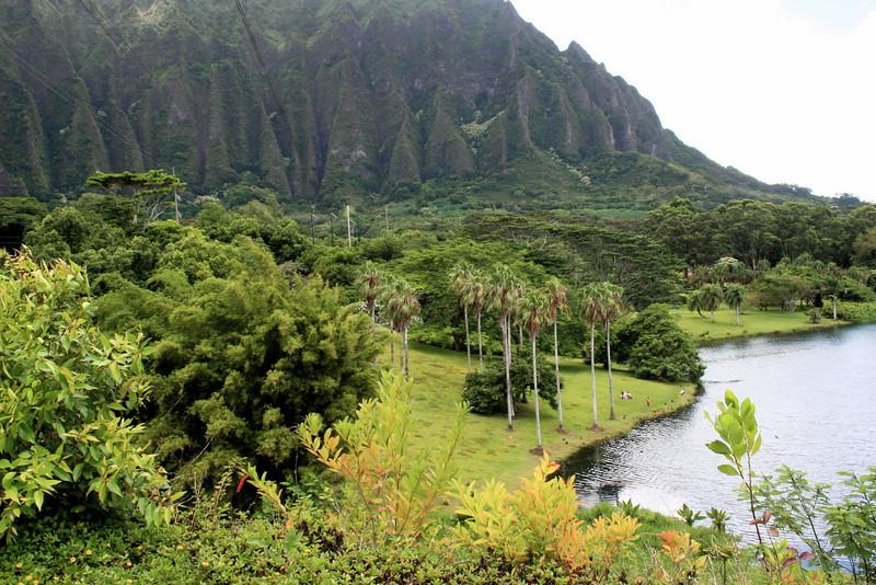 oho`omaluhia botanical gardens