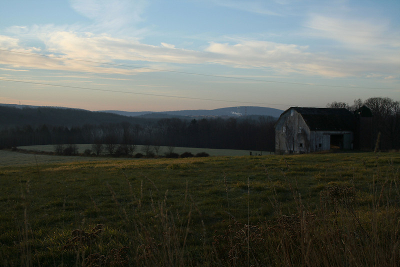 Hayfield  Farm - A Morning View