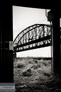 bridge through pylons bw-8635