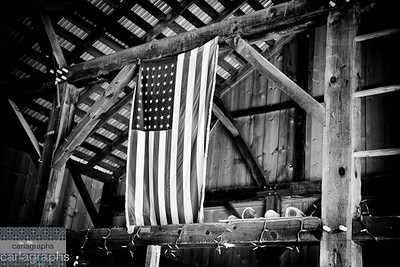 Country Barn-1081