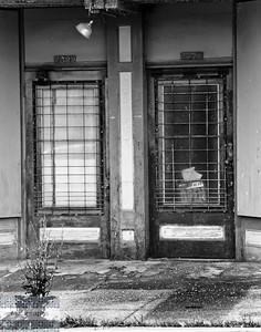 Doors-3417