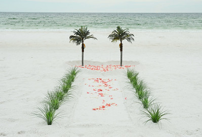 Palms:  Filled Heart, Coral & Cream Rose Petals