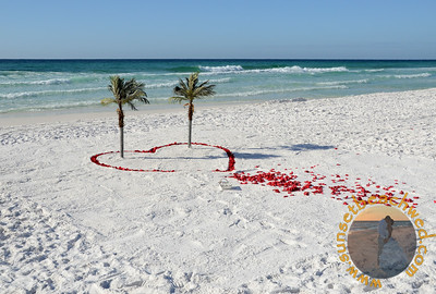 Palms:  Outlined Heart, Red Rose Petals