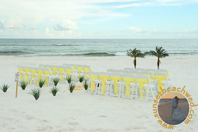 Palms Trees with Grass Aisle and Chairs with Yellow Chair Sashes