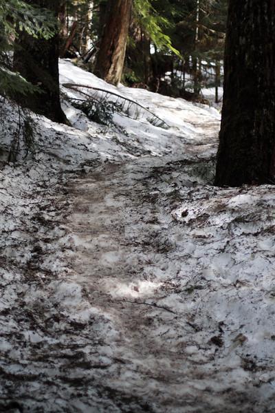 Heather Lake Hike