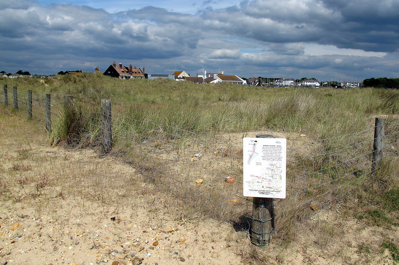 Re-grassed area on the Sandspit.