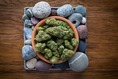 Stone_Dispensary_Hash_Plant-187841
