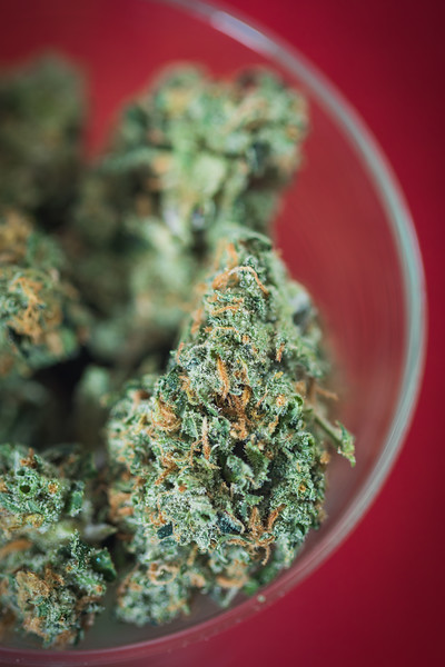 Trenchtown_Citral_Skunk-184217