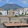 Heracleum and Vesuvius