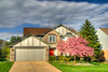 My Home with Cherry Trees in Blossom (HDR Composite)