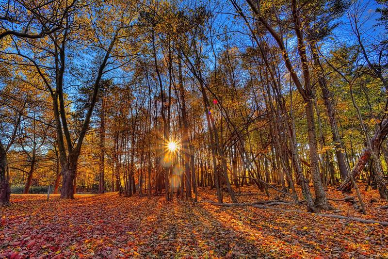 Mendon Ponds Fall sunset