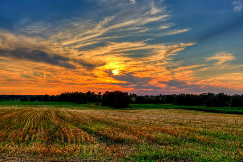 Mendon Field Sunset