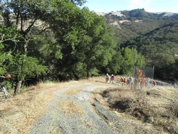 Video of Mt. Diablo Adult School hiking class as they scale the steep Moss Rock road up to the Highland Ridge Trail.