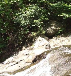2012 06-16 White Oak Canyon Falls
