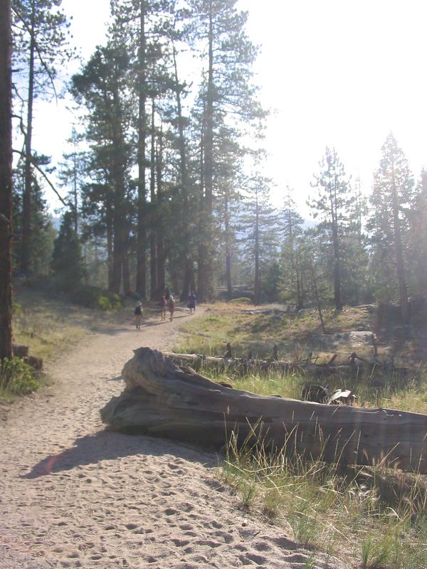 around 8:15, we reached little yosemite valley, a long, flat sandy area where many backpackers stay the night.  the next mile was farily flat, as seen in this picture.  the group split up here, with lav and david taking the lead, nelson and kelly hiking together slightly in front of alex, followed closely by jennifer, grace, and cris.  i tried to keep a more steady, but slower pace, while jenni, grace, and crist took a faster pace, but stopped more often.