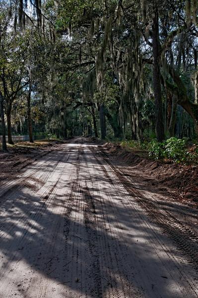 Daufuskie Road