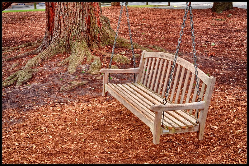 Harbour Town Oak and Swing