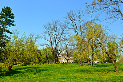 Hampton Mansion, looking from the path leading to the Cemetery up to the Mansion