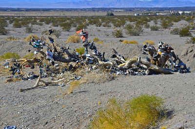 The Amboy Shoe Tree, Located on Route 66 about ¼ mile east of Roy's Café and Motel in Amboy, California. There isn't much of this once thriving tree. The tree used to stand about 20 feet tall and was strewn with shoes, bras and other assorted items from travelers far and wide. Almost completely gone, the once proud tree of Amboy is reduced to a shadow of its self. But the tradition continues with many shoes appearing to be new.