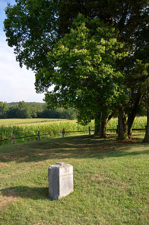 Buried in the Ellwood Manor Cemetery is Gen. Stonewall Jackson's left arm. This marker marks the place where it is buried.