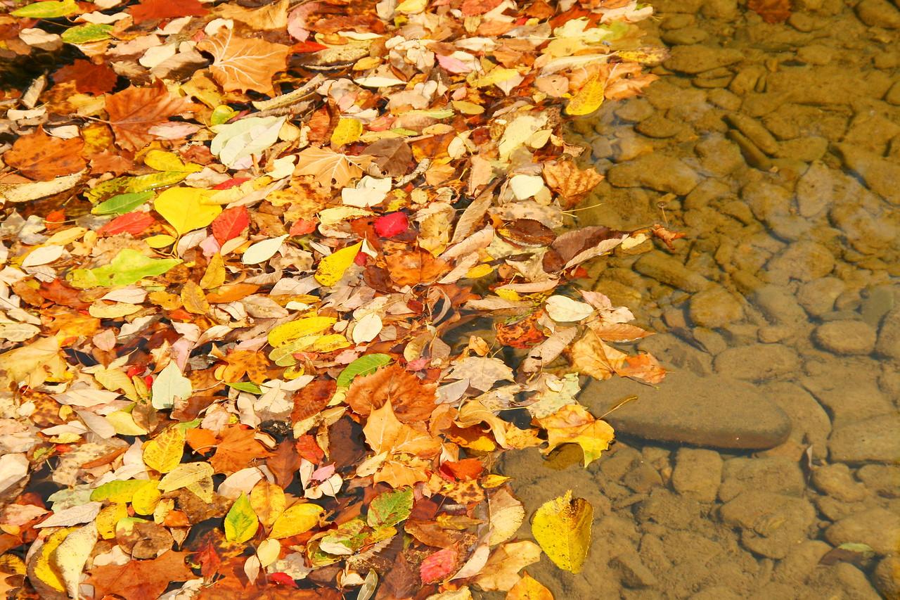 Humpback Bridge Fall