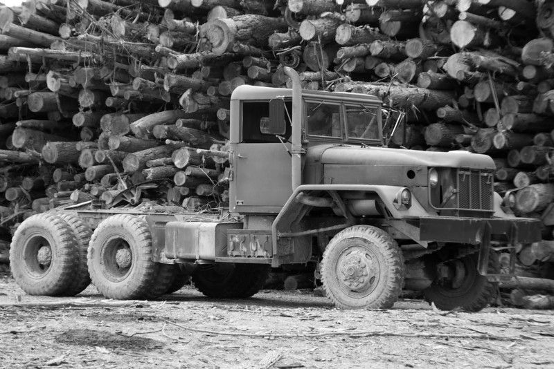 Working the logging business